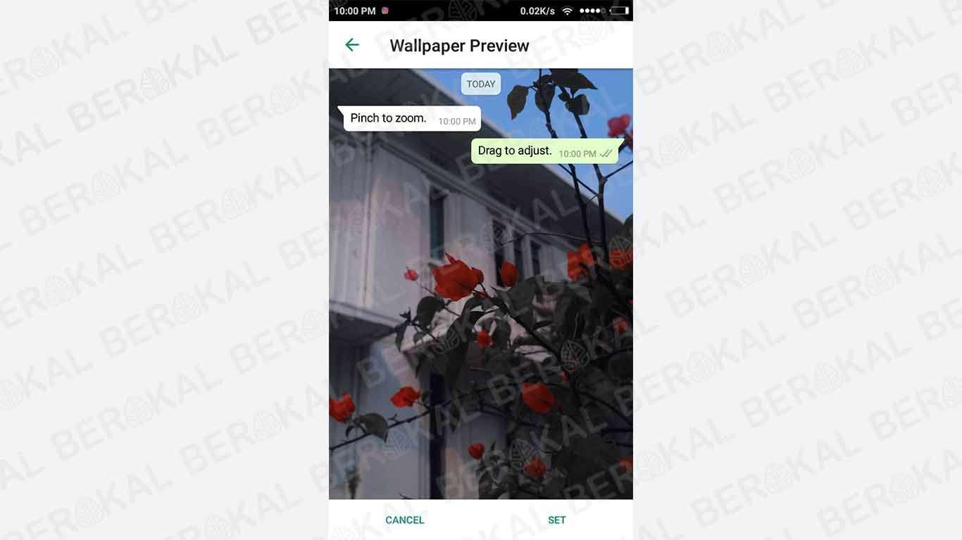 Download 6300 Koleksi Wallpaper Wa Foto Sendiri HD Gratid