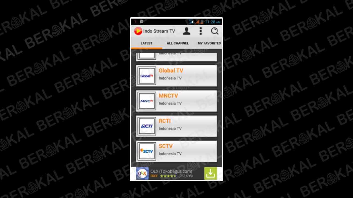 Indo Stream TV