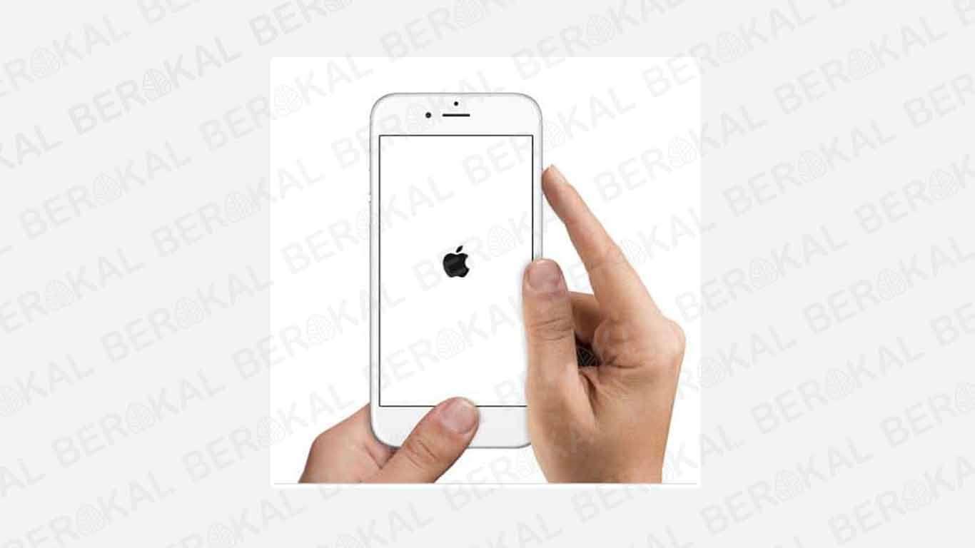 reset iPhone 5