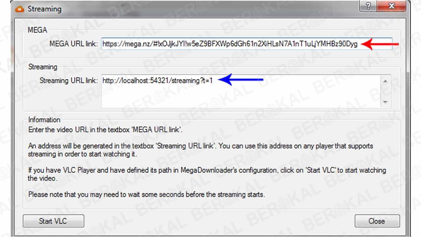 Cara atur download file di Mega Downloader