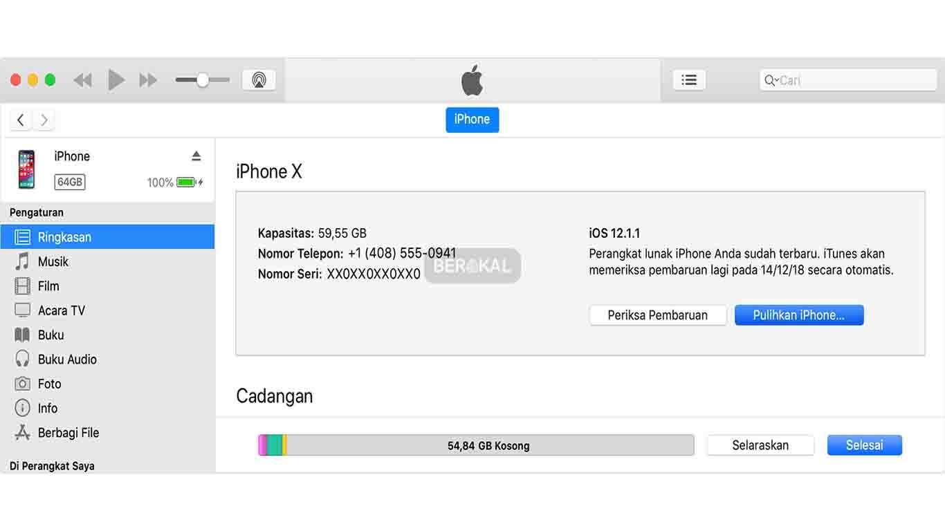cek iPhone dengan iTunes
