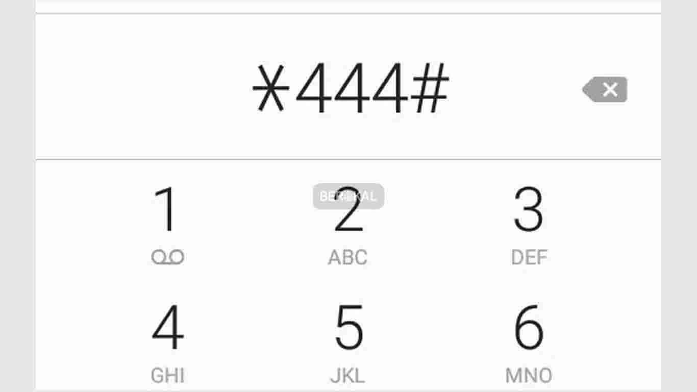 Menu Panggilan Untuk Cek UNREG Kartu Telkomsel