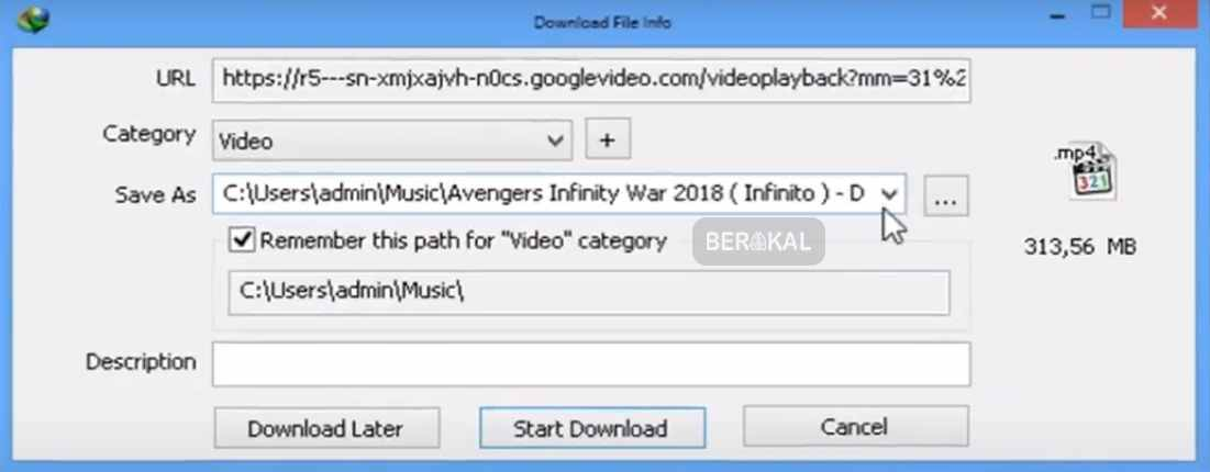 download file info idm
