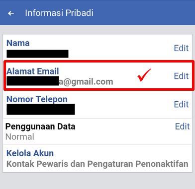 melihat email