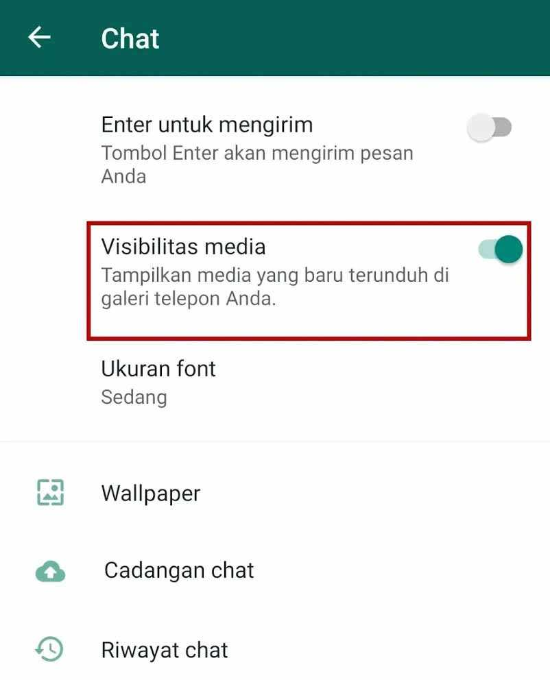visibilitas media whatsapp