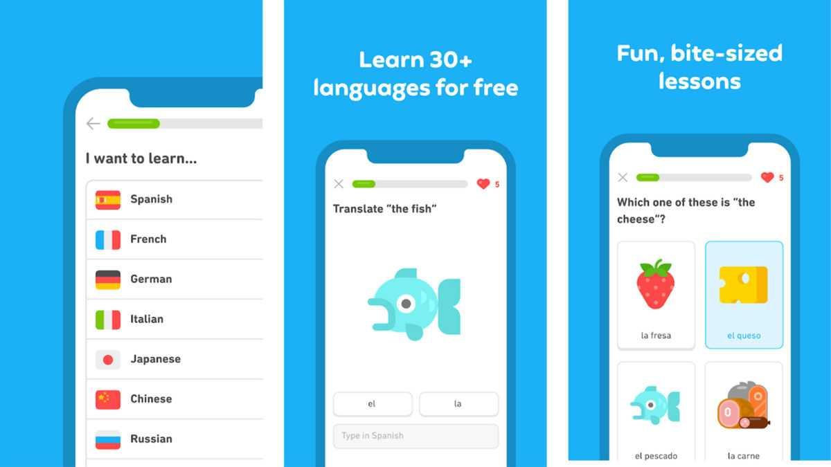 aplikasi belajar bahasa inggris untuk pemula