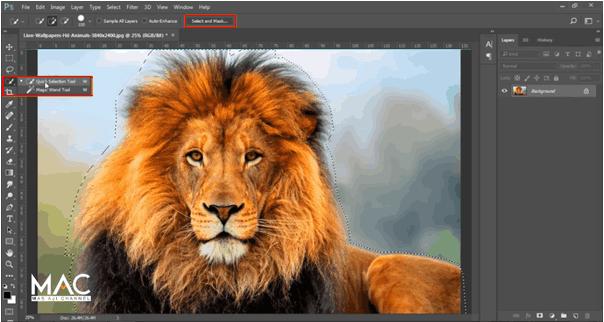 Select and Mask Photoshop