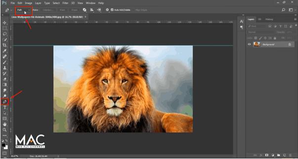 cara crop foto di photoshop dengan pen tool